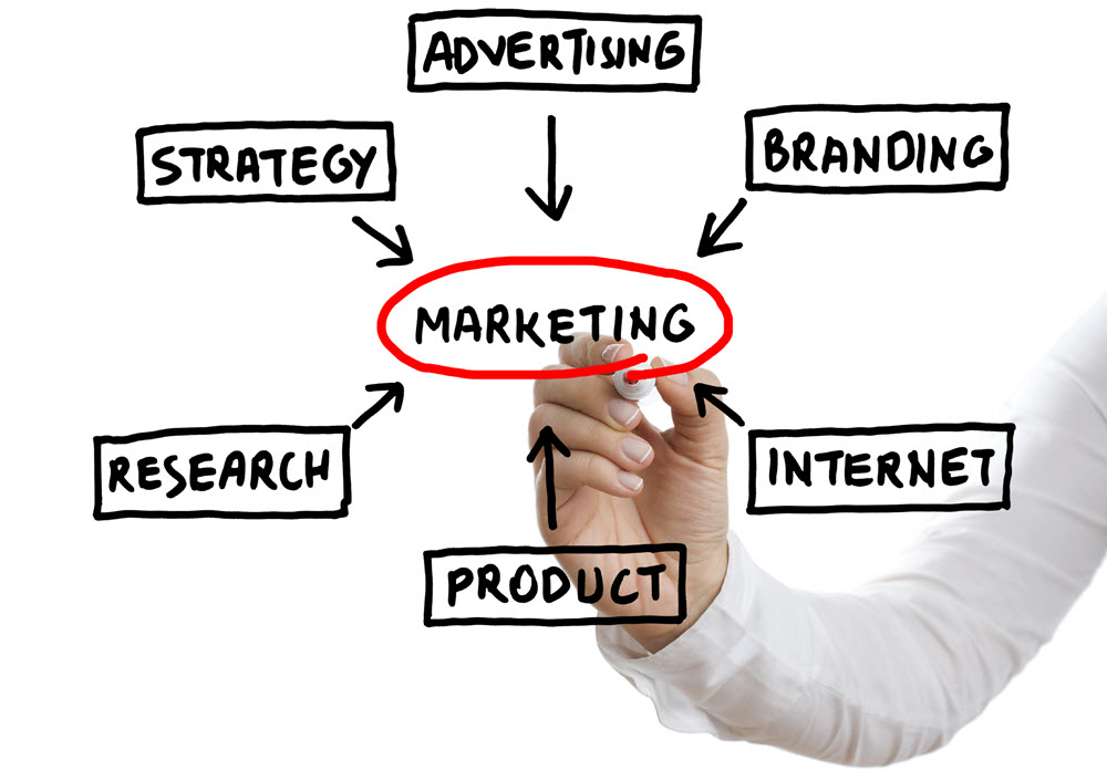 marketing consultant, small business marketing consultant, small business marketing management