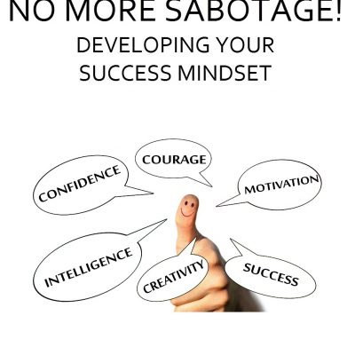 Develop Your Success Mindset cover